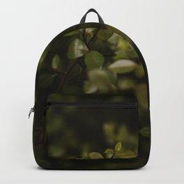 Maidenhair Vine Plant Printable Wall Art | Floral Flower Botanical Nature Outdoors Macro Photography Print Backpack