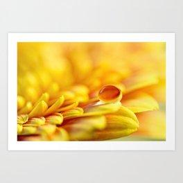 Sunshine Drop Art Print