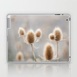 Thistles Laptop & iPad Skin