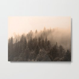 Fog over the forest Metal Print