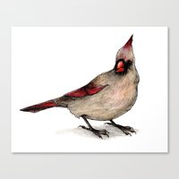 cardinal Canvas Prints featuring Cardinal by Sarah Jane Rozman