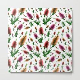 Australian Native Floral Bottlebrush Print Metal Print