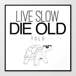 Live Slow Die Old Canvas Print