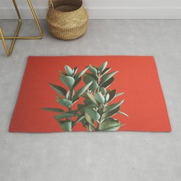 Copper Spoons - Kalanchoe orgyalis Rug