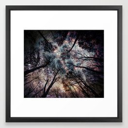 Starry Sky in the Forest Framed Art Print
