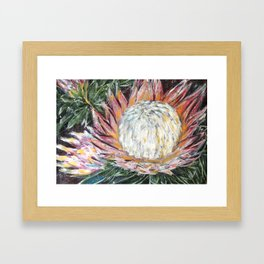 ONWARDS TO GLORY - SPRING PROTEA by Artist HSIN LIN / H.Lin the Artist Framed Art Print
