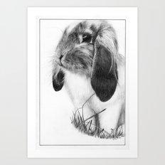 Ralph the Rabbit Art Print