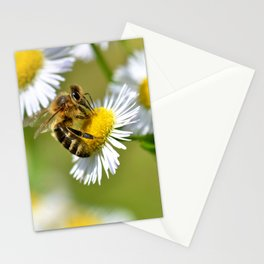 Bee on flower 83 Stationery Cards