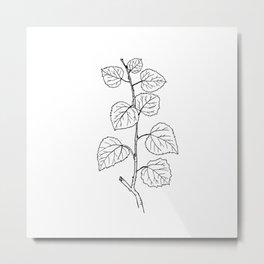 Aspen Branch Minimalism Metal Print