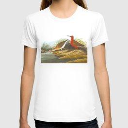 Pigmy Curlew Bird T-shirt