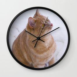 Kitten Discovers Snow! Wall Clock