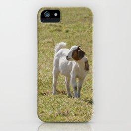 Goat - baby iPhone Case
