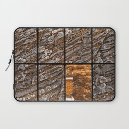 Petrified Window Laptop Sleeve