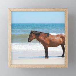 Watercolor Horse 50, Assateague Pony, Assateague, Maryland, Solitary Stand Framed Mini Art Print