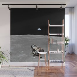 Nasa Picture 2: Apollo 11 the lunar module Wall Mural