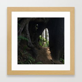 Forest Portal Framed Art Print