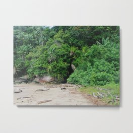 Borneo Bako National Park Metal Print