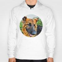 megan lara Hoodies featuring Dog Lara by itsme23