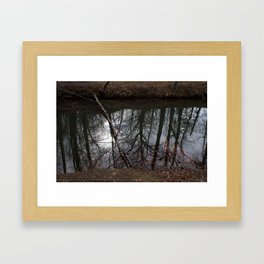 Reflections vs. Reality Framed Art Print