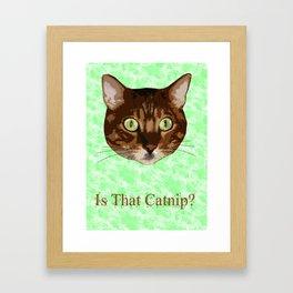 Catnip Crazed Cat Framed Art Print
