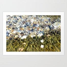 Comunidad de ostras Art Print