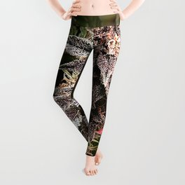 Bud and Leaf Leggings