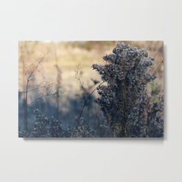 Fluffy Autumn Fall Metal Print