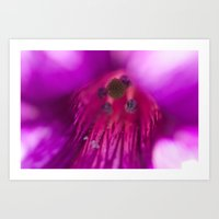 Purple Ambush Art Print