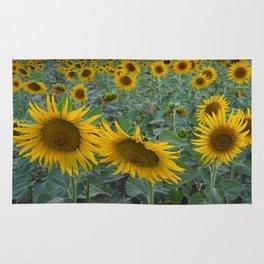 Sunflowers field. Pink sunrise Rug