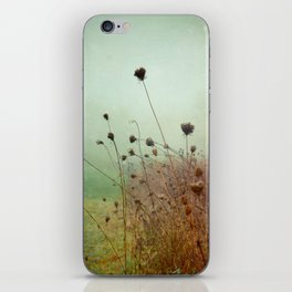 A Dense Fog Surrounded Her iPhone Skin
