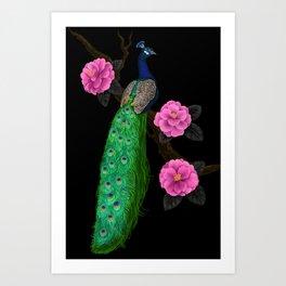Night peacock garden    Art Print
