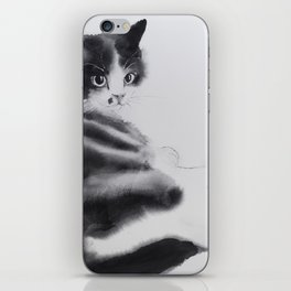 Fulopke our cat is resting iPhone Skin