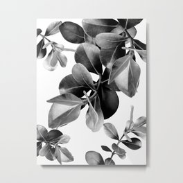 Ficus Leaves Dream #2 #bw #decor #art #society6 Metal Print