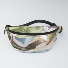 Rosy Glow Ficus Leaves Fanny Pack