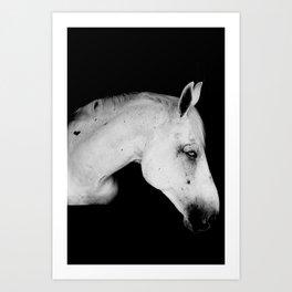 Pale Horse Art Print