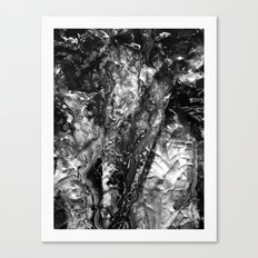 False Self Canvas Print