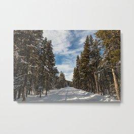 Yellowstone National Park - Grand Loop Road Metal Print