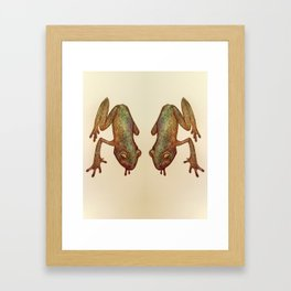 Glass Frog Framed Art Print