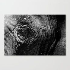 Never Forgets Canvas Print