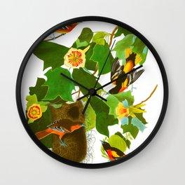 Baltimore Oriole Bird Wall Clock