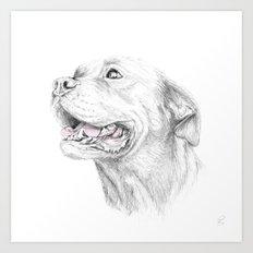 Murphy :: Loyalty Art Print