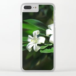 Two White Flowers at McKee botanical gardens in Vero Beach Florida Clear iPhone Case