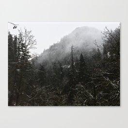 PNW Canvas Print