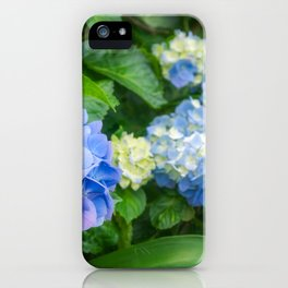 Blue and Yellow Hortensia Flowers iPhone Case