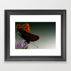 I spread my wings Framed Art Print