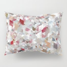 Chameleonic Panelscape Jacopo Pillow Sham