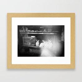 Lucky Framed Art Print