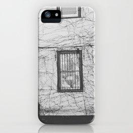 Vines - Harvard Square iPhone Case