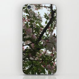 Lighted Branches iPhone Skin