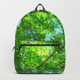 Canopy of Green, Leafy Branches with Blue Sky Backpack
